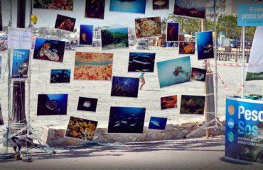 detiketa-estudio-agencia-publicidad-pescasos-evento