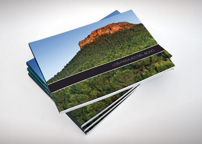 1-detiketa-estudio-creativo-paisajes-buho-libro