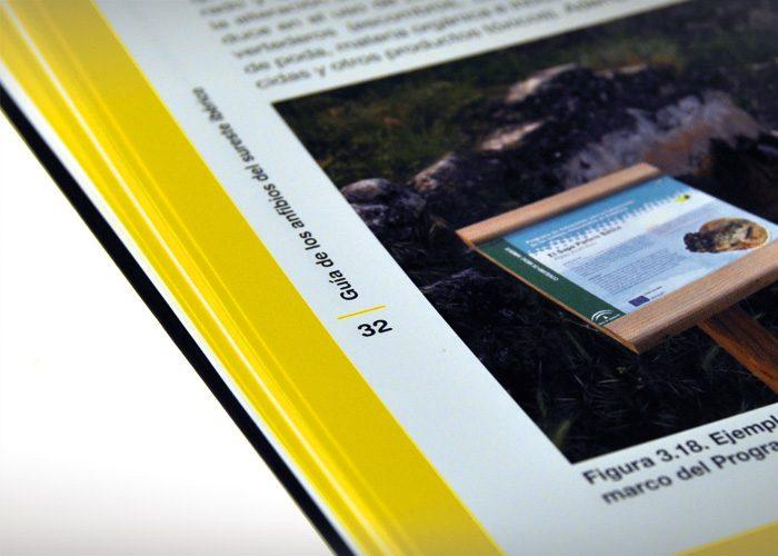 3-detiketa-estudio-creativo-guia-anfibios-sureste-iberico-proyecto-amphibia-columbares-detalle-pagina