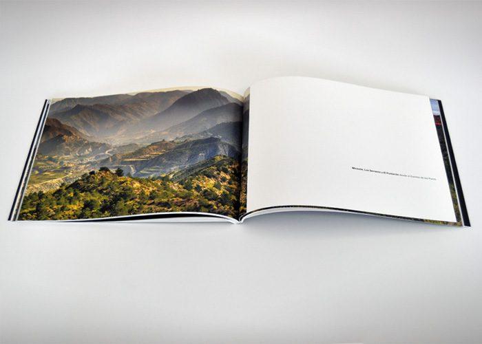 3-detiketa-estudio-creativo-paisajes-buho-maqueta