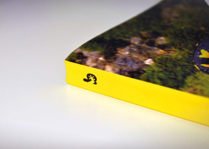 4-detiketa-estudio-creativo-guia-anfibios-sureste-iberico-proyecto-amphibia-columbares-lomo