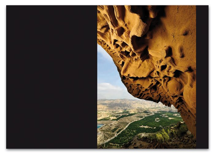 4-detiketa-estudio-creativo-paisajes-buho-pagina-interior