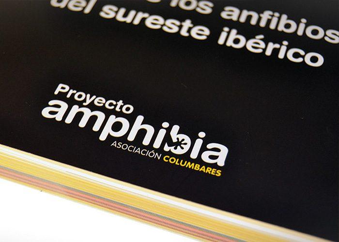 detiketa-estudio-creativo-guia-anfibios-sureste-iberico-proyecto-amphibia