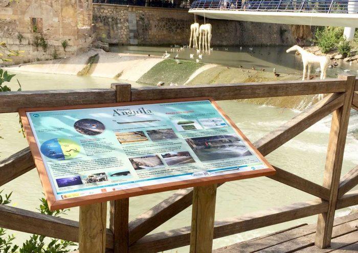 3-detiketa-estudio-creativo-proyecto-anguila-asociacion-columbares